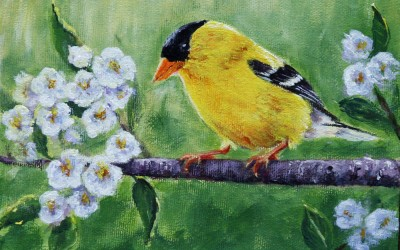 Touch of Gold (gold finch)