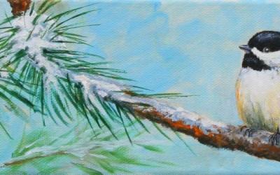 Snowbird #8